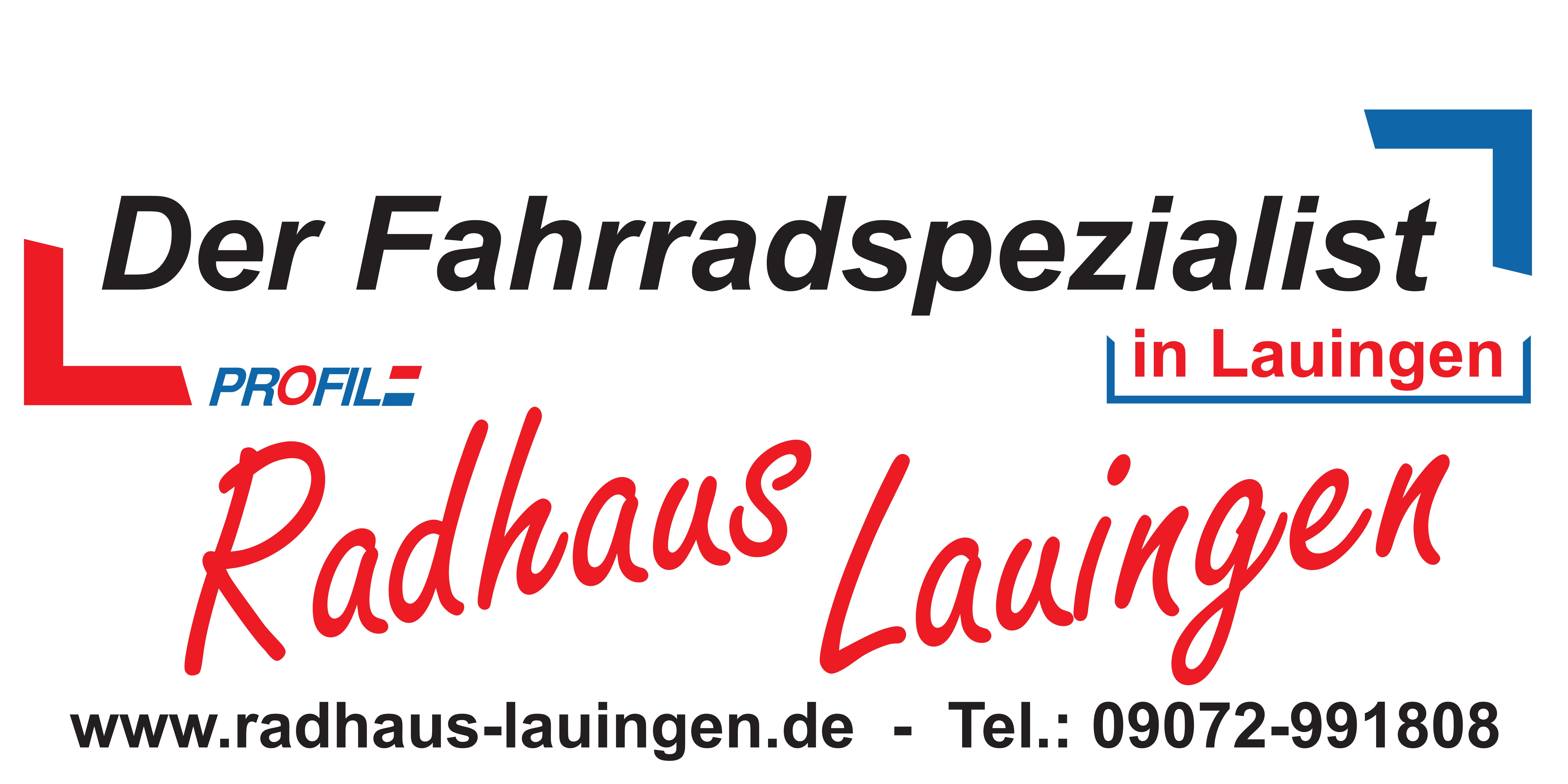 Radhaus Lauingen